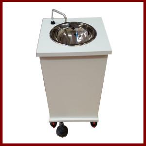 Multi-purpose portable sink